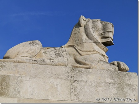 One of the guardian lions basking in the late afternoon sunlight