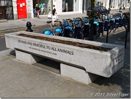 Modern cattle trough donated by the  Pembridge Association