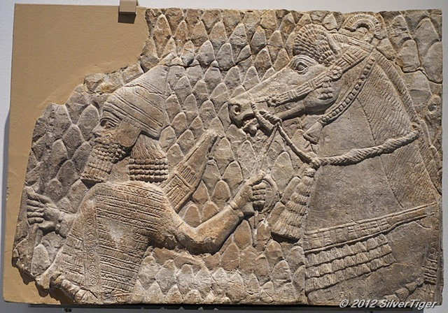 Assyrian horse being led by an archer